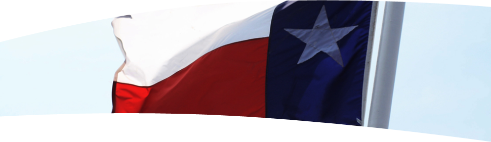 Banner image showing the Texas state flag
